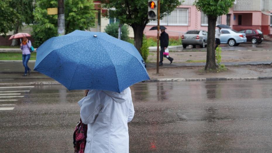 Грозовые дожди пройдут в Воронеже на короткой рабочей неделе