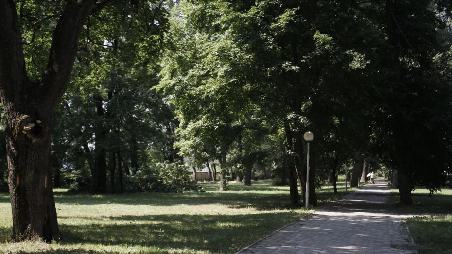 Под Воронежем селяне пожаловались на годичную задержку в строительстве детской площадки