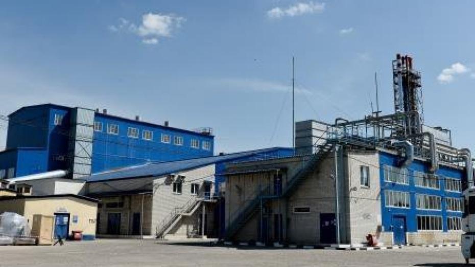 Экологи: завод «Воронежские дрожжи» отравлял воздух
