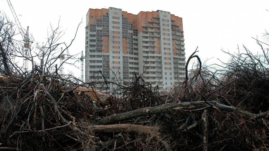 Воронежские депутаты разрешили застраивать яблоневый сад соцобъектами