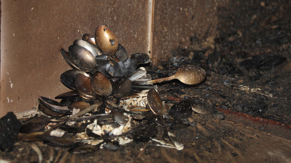 В Воронежской области сгорел жилой дом