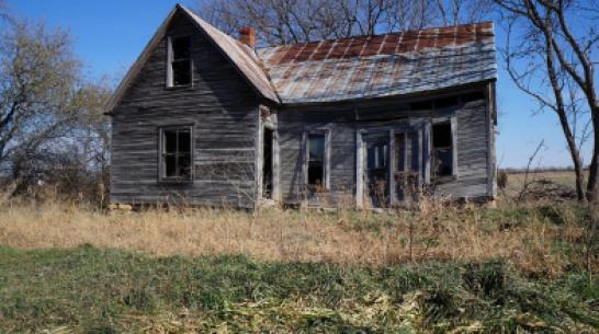 Под Борисоглебском полицейские нашли дом вооруженного отшельника