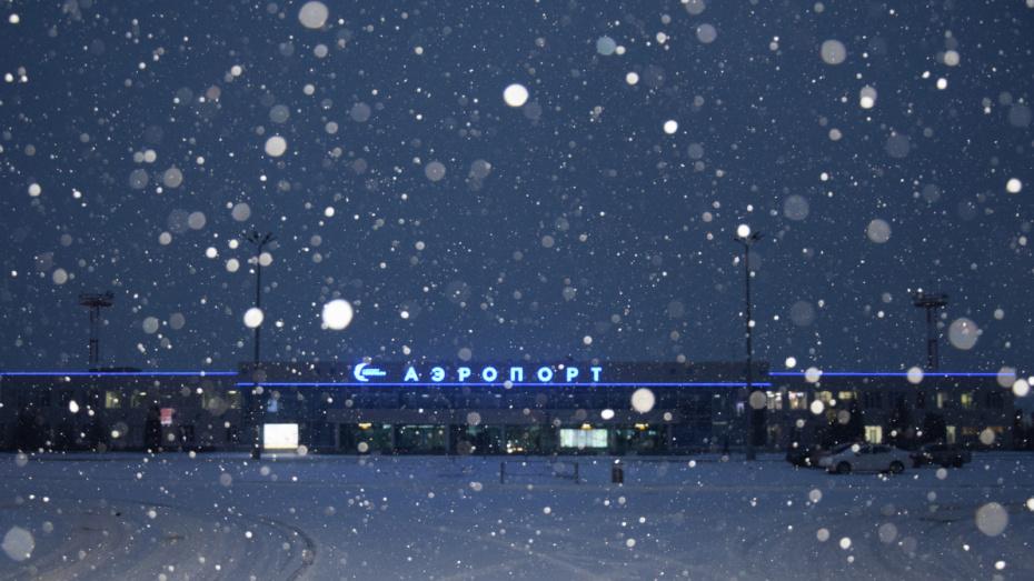 Воронежские общественники: присвоение имени аэропорту не должно быть причиной раздора