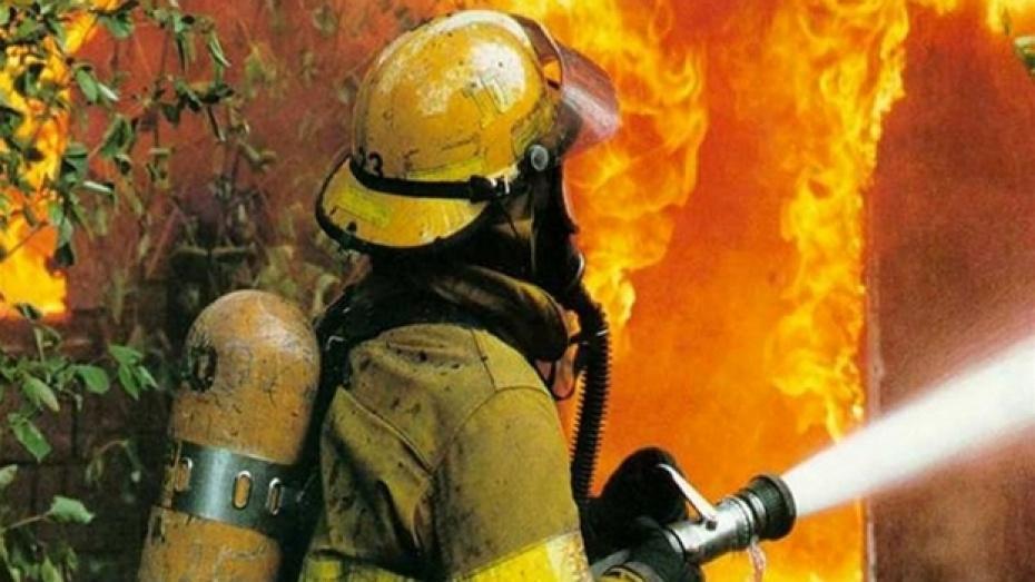 В ночном пожаре в Воронежской области погибли мать с сыном