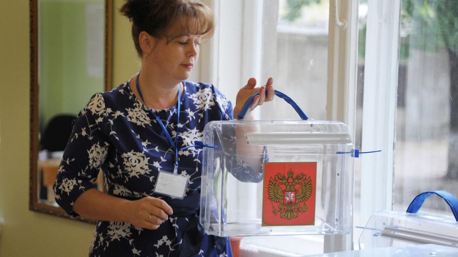 В Воронежской области пройдут 16 избирательных кампаний