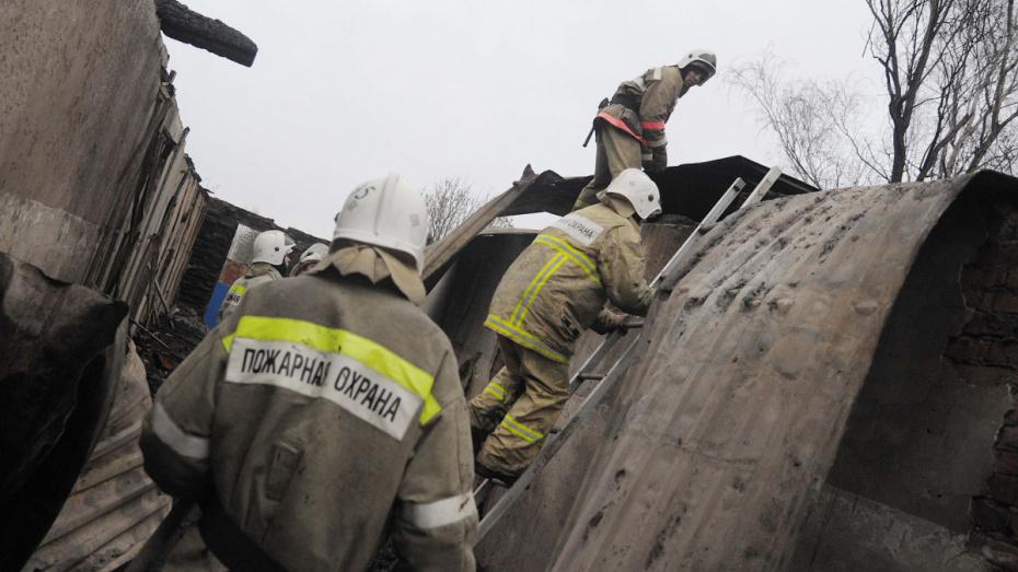 От удара молнии в Воронежской области загорелся частный дом