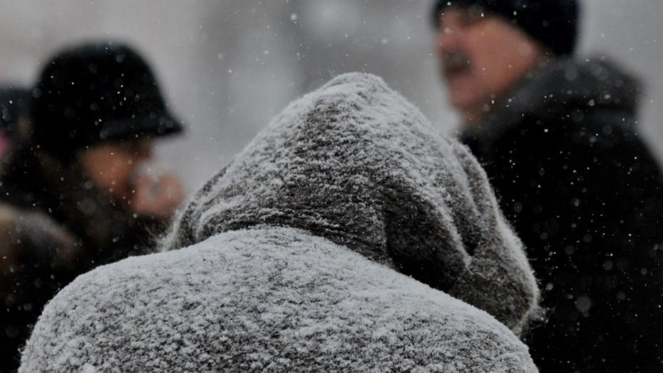 МЧС: ВВоронежской области предполагается ветер до20 м/с имокрый снег