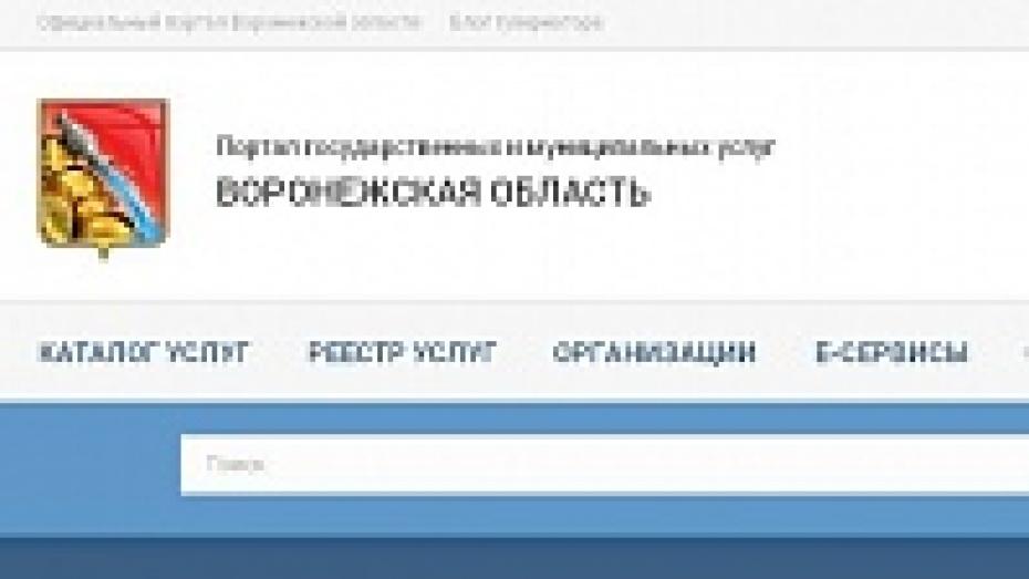 Жители Воронежской области смогут самостоятельно «отслеживать» необходимые документы на портале госуслуг