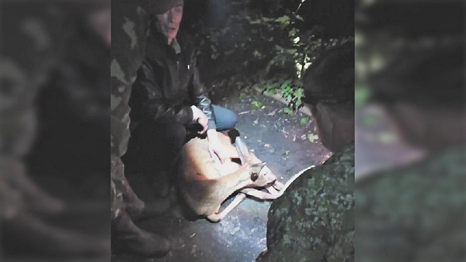 В Анне освободили застрявшую между решетками забора молодую косулю