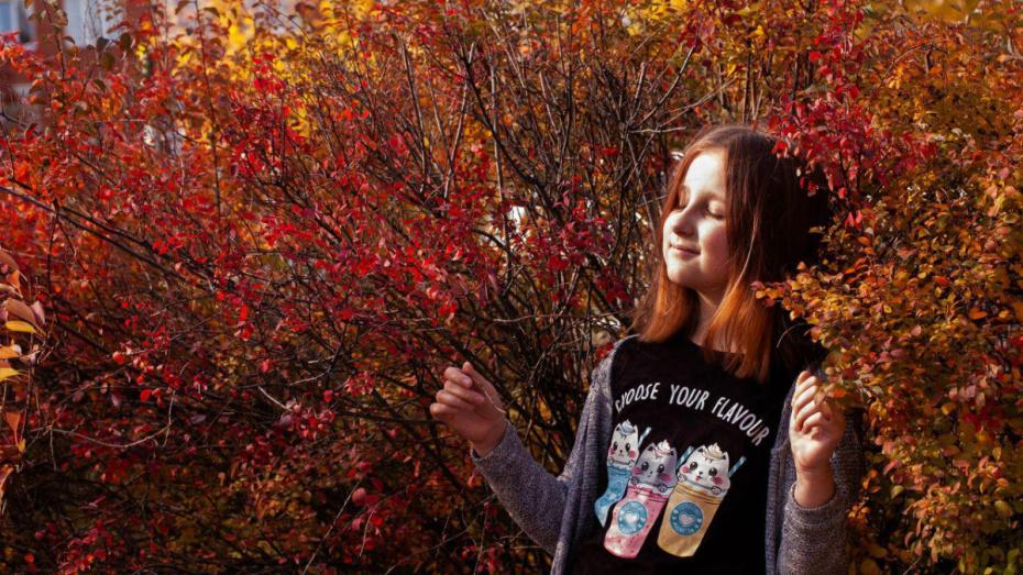 Синоптики: бабье лето задержится в Воронеже еще на неделю