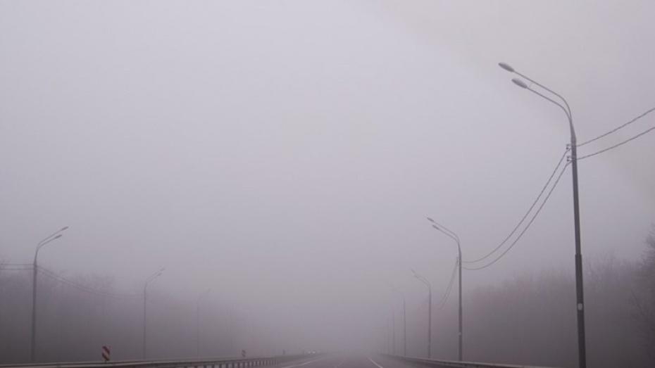 В Воронежской области объявили желтый уровень погодной опасности из-за тумана