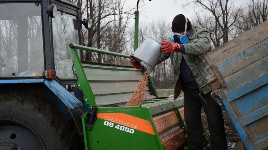 Острогожские аграрии закончили сев на 2 недели раньше обычного