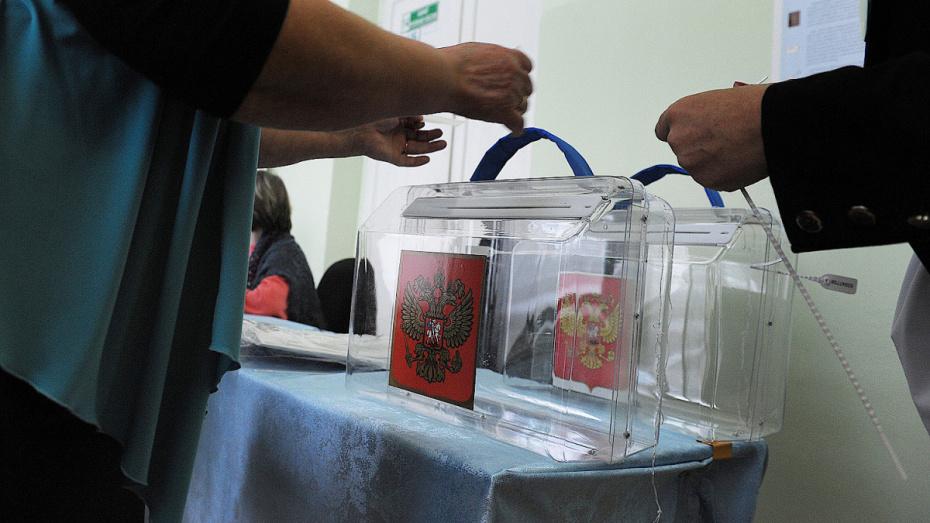 В 3 районах Воронежской области перенесли выборы