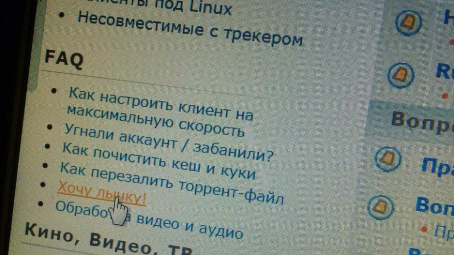Житель Воронежской области попался на продаже скачанного с торрента Windows