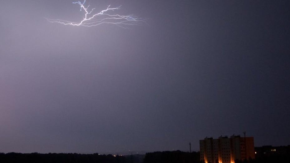 Граждан Воронежской области предупреждают ошквалистом ветре и вероятной грозе
