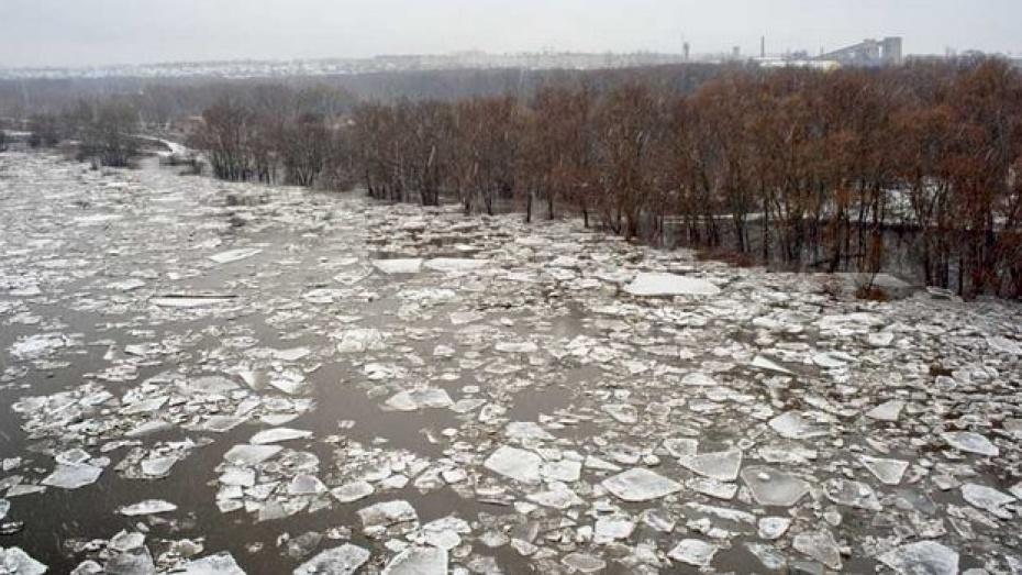 В Лисках на Дону начался ледоход