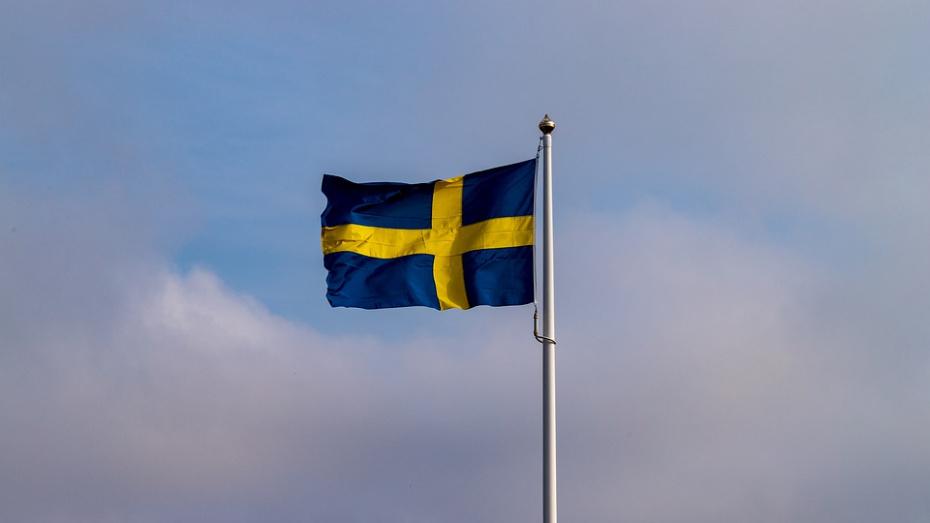 Воронежцы в Дни Швеции смогут обменяться одеждой и посмотреть фильмы на языке оригинала