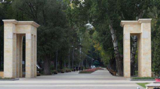 На детскую площадку в Центральном парке Воронежа упал дуб