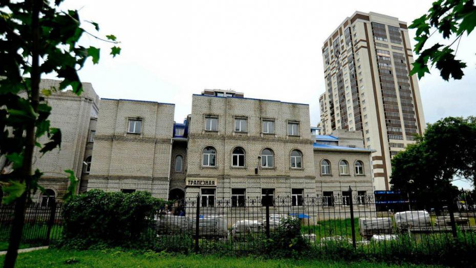 В Воронеже перепланируют участок у цирка