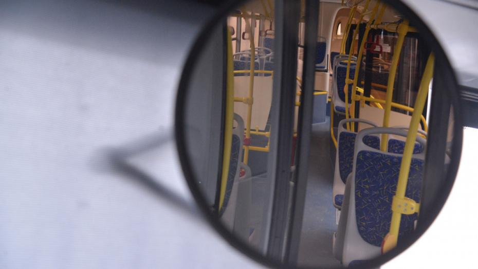 В Воронеже перенесли сроки внедрения электронных проездных