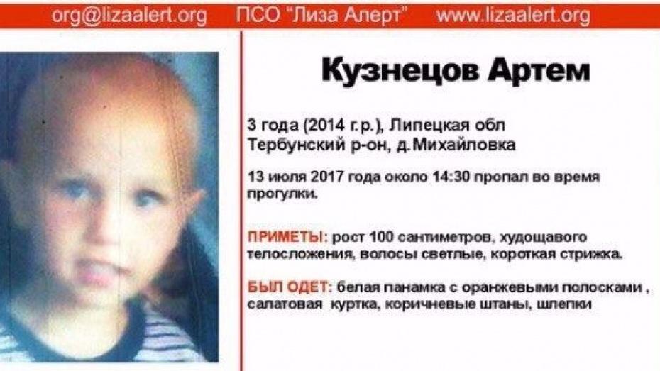 3-х летний ребенок бесследно пропал вЛипецкой области