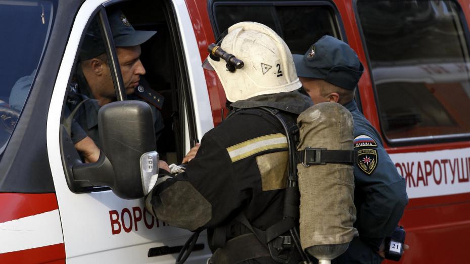 В Воронеже в 2018 году зафиксировали 118 ландшафтных пожаров