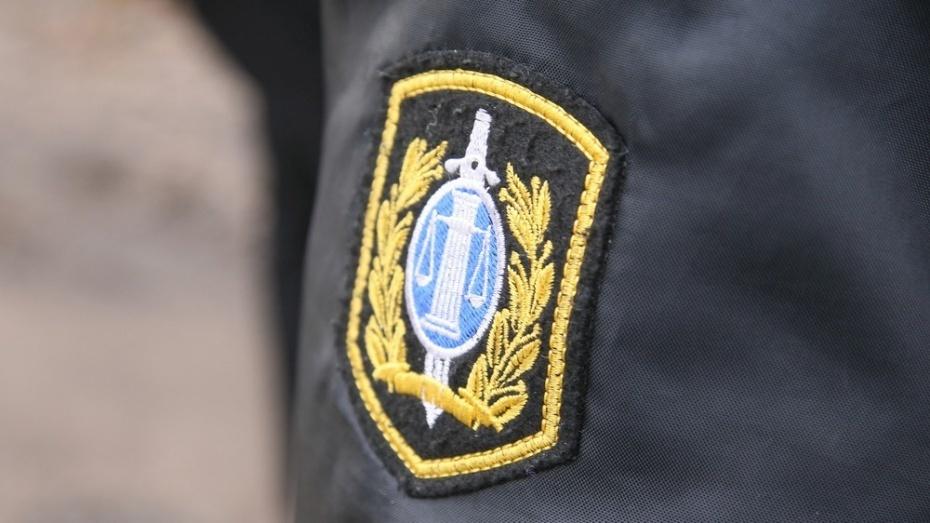 В Воронеже должница спрятала от приставов иномарку