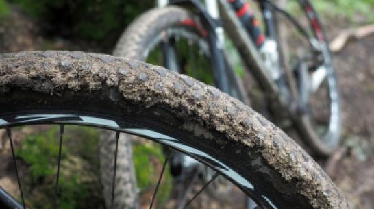 В Воронежской области водитель сбил 11-летнего велосипедиста и сбежал