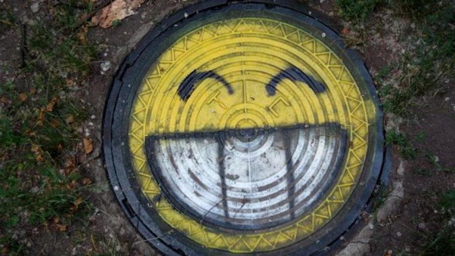 Воронежцам предлагают раскрасить канализационные люки