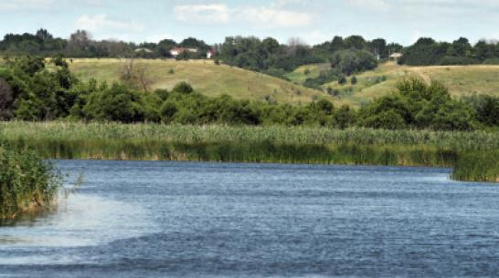 Под Воронежем из упавшей в реку машины достали тело мужчины