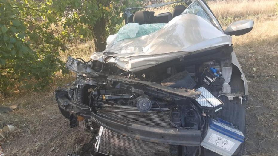 В Верхнехавском районе в лобовом ДТП пострадали 6-летняя девочка и 2 взрослых