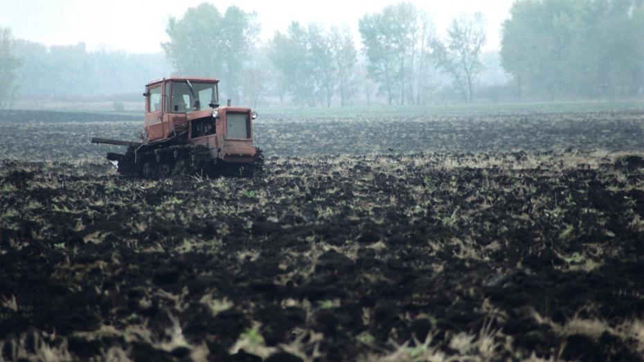 Во всех районах Воронежской области началась посевная