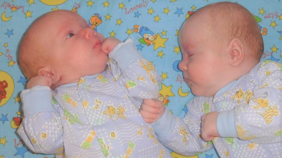 В первом полугодии 2020 года в Воронежской области родились 102 двойни