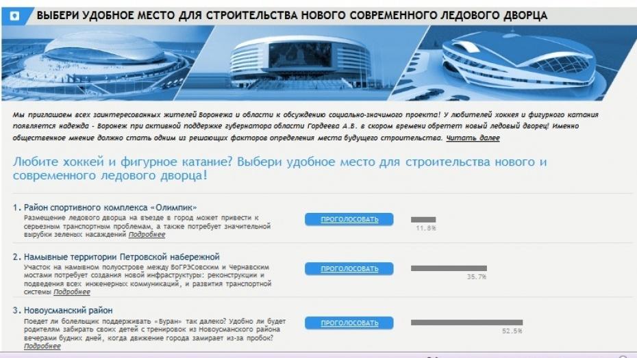 Большинство воронежцев хотят, чтобы главный ледовый дворец региона построили в Новоусманском районе