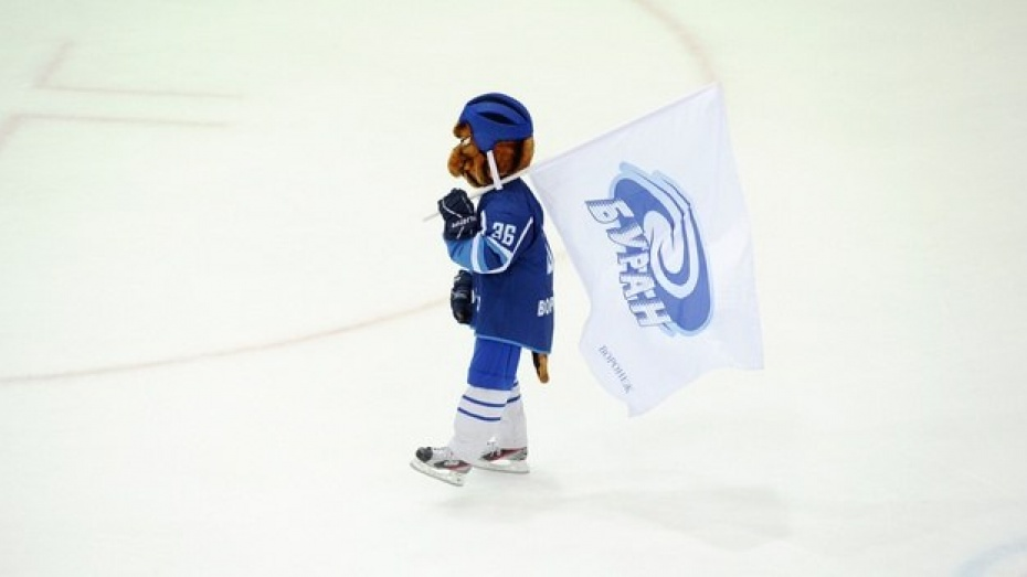Воронежские налоговики потребовали признать хоккейный «Буран» банкротом