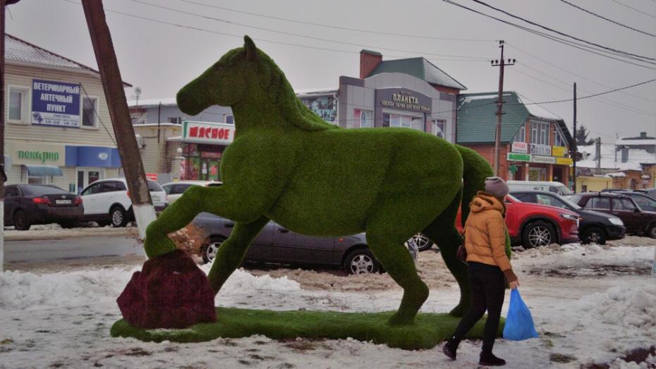 В центре Борисоглебска установили топиарную фигуру коня
