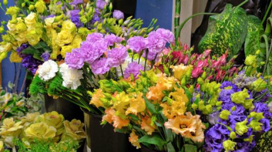 В аэропорту Воронежа уничтожили 500 цветов из Армении