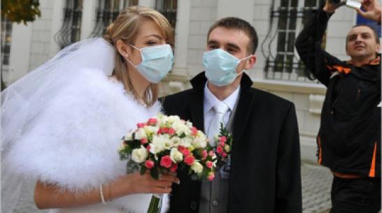 Воронежских молодоженов попросили отказаться от пышных свадеб