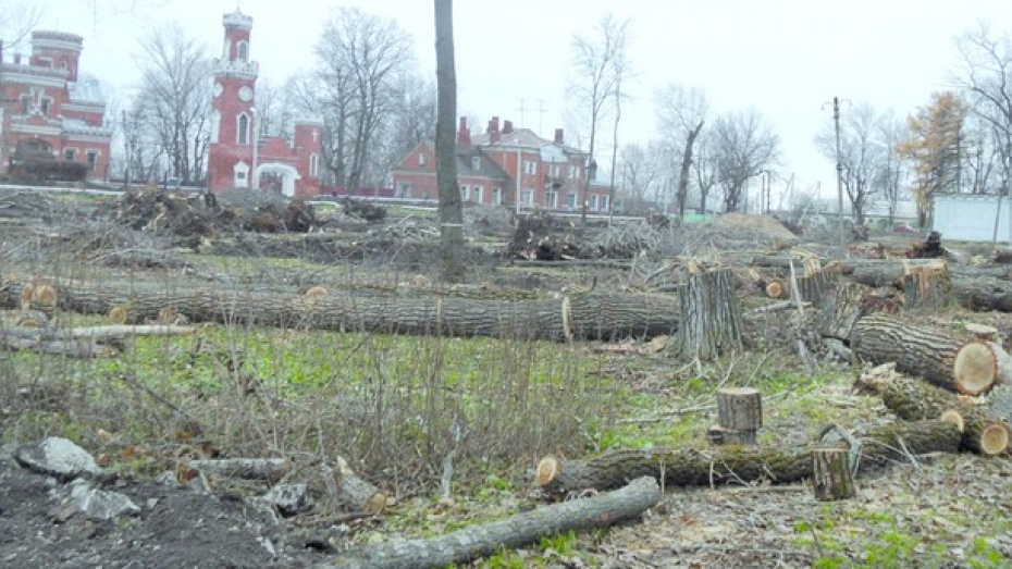 В Рамони началась реконструкция парка при дворце принцессы Ольденбургской