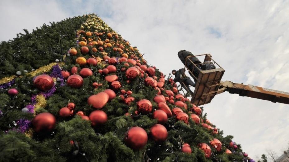 Воронеж может остаться без праздничной елки наплощади Ленина
