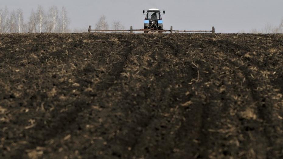 Федеральные средства на проведение посевных работ поступят в Воронежскую область к концу этой недели