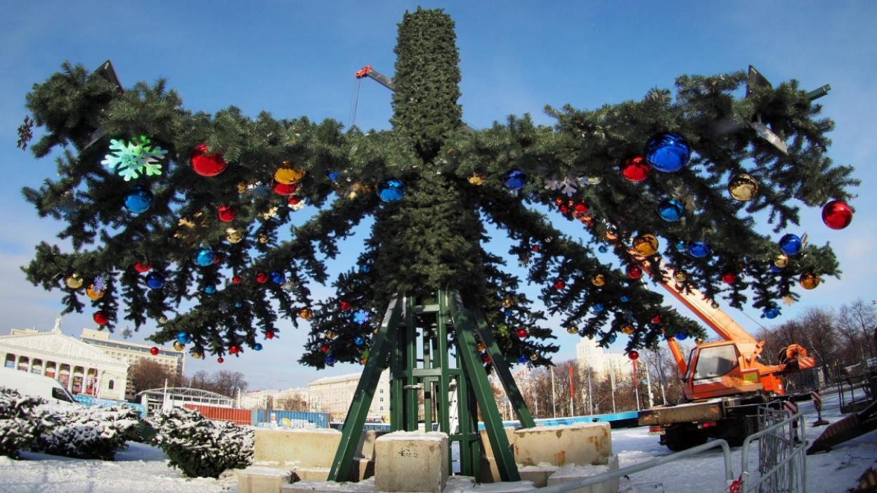 Новогодние злоключения. Неудавшийся установщик главной воронежской елки снова возмущен