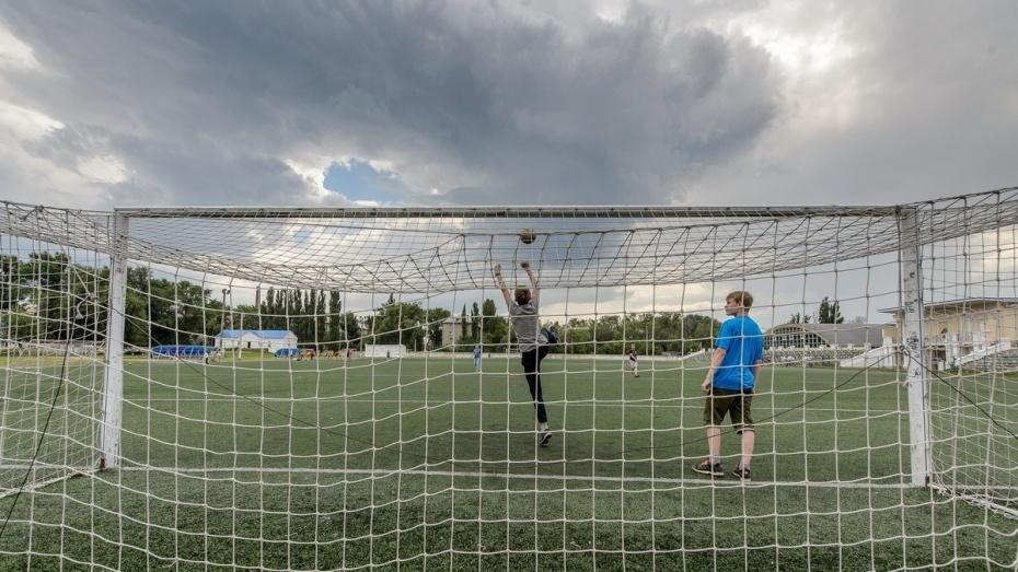 Власти Воронежа нашли подрядчика для реконструкции тренировочной площадки «Чайки» к ЧМ