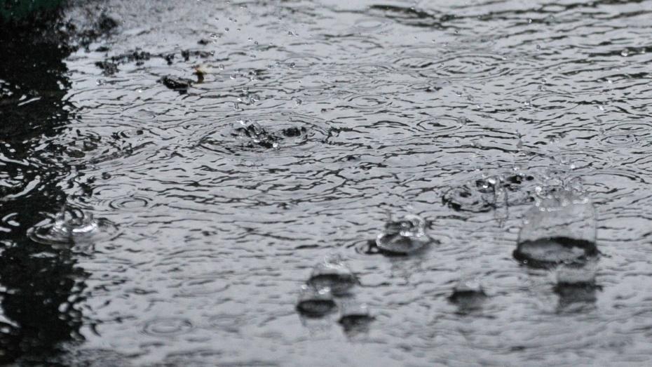 Откуда взялись воронежские ливни? Пять вопросов о летнем потопе