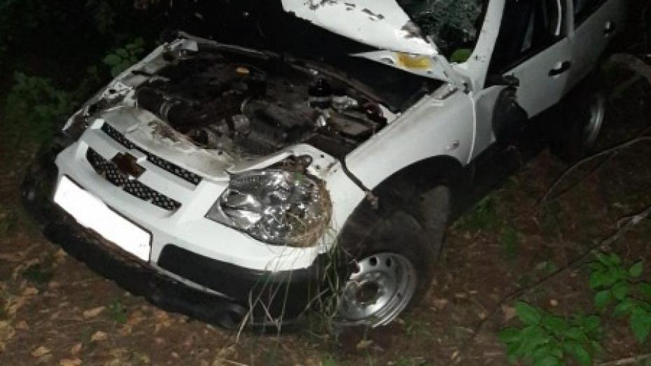 В Воронежской области пьяная автомобилистка отправила пассажира в больницу