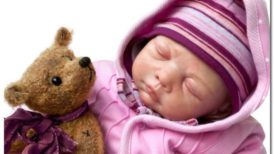 В Воронеж приедет выставка-продажа медвежат Тедди и кукол-реборнов