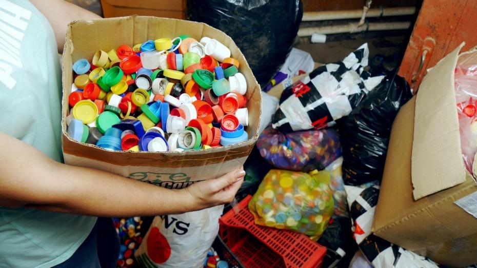 За 2018 год в Воронеже на контейнерных площадках собрали 545,4 т пластика