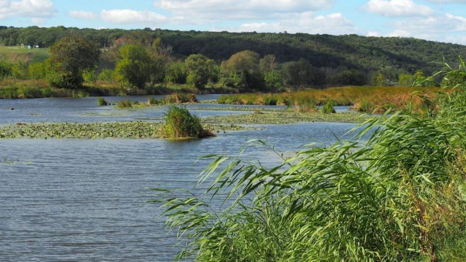 Озеро Круглое под Воронежем начали охранять с помощью беспилотников