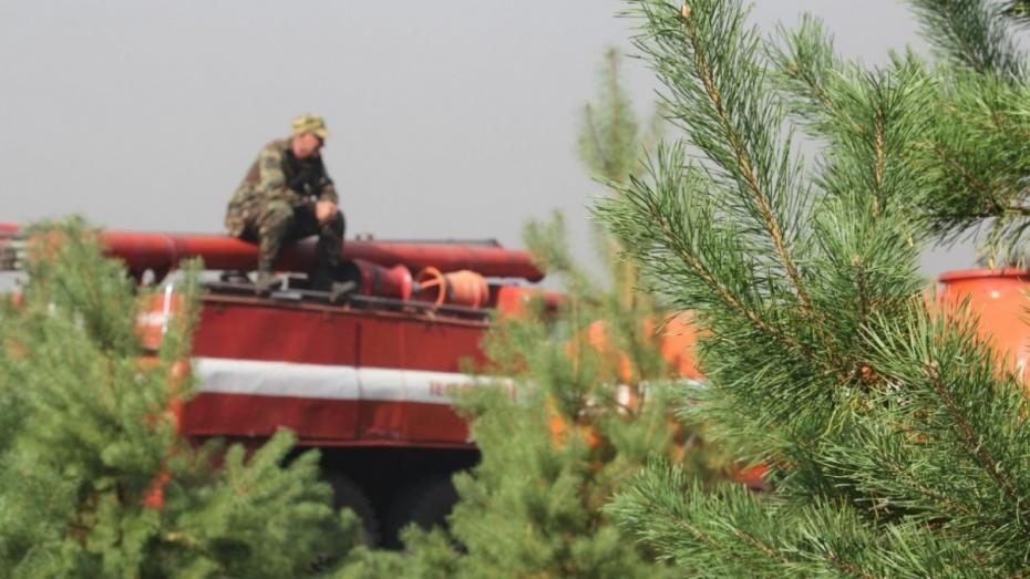 Спасатели объявили в Воронеже высокий класс пожароопасности