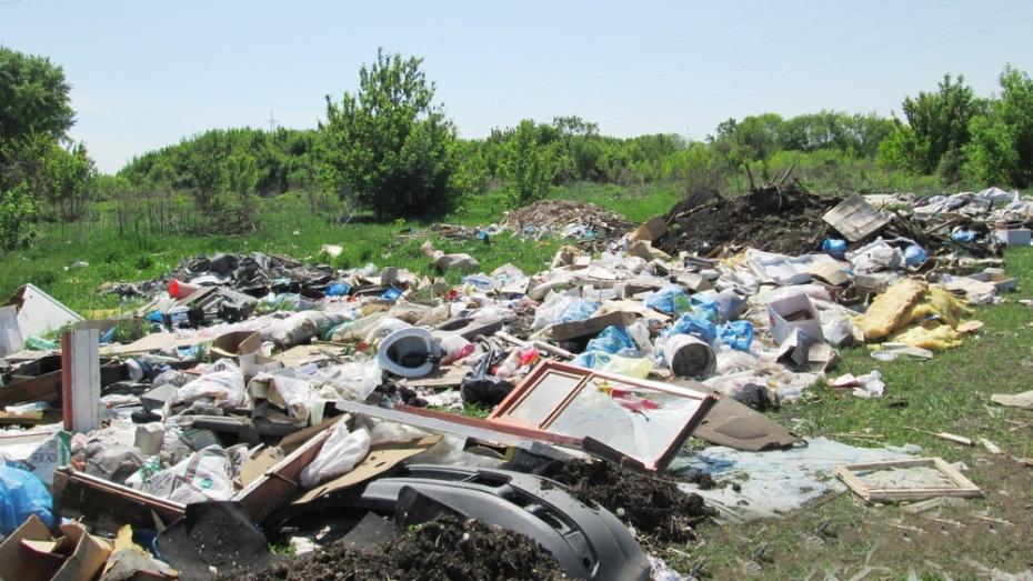 В поселке Латная за 5 месяцев убрали больше тысячи тонн мусора
